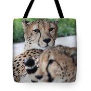 Cheetah Awakening Tote Bag
