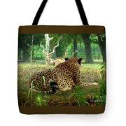 Cheetah Lunch-87 Tote Bag