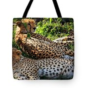 Cheetah - Masai Mara - Kenya Tote Bag