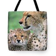 Cheetah Mother And Cub Tote Bag