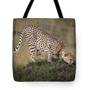 Cheetah On Termite Mound Tote Bag