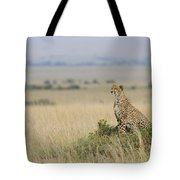 Cheetah Perched On A Mound Tote Bag