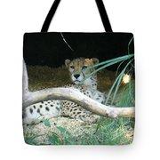 Cheetah Resting  Tote Bag