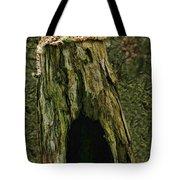Cheetah Tree Perch Tote Bag