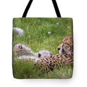 Cheetah With Cubs Tote Bag