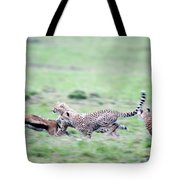 Cheetahs Acinonyx Jubatus Chasing Tote Bag
