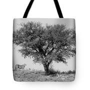 Cheetahs And A Tree Tote Bag