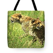 Cheetahs Running Tote Bag