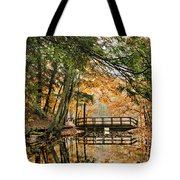 Chenango Valley State Park Tote Bag by Christina Rollo