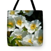 Cherokee Rose 2011 Tote Bag