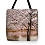 Cherry Basin Tote Bag