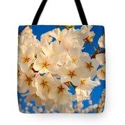 Cherry Blossom Macro Tote Bag