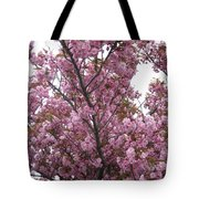 Cherry Blossoms 2 Tote Bag