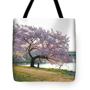Cherry Blossoms 2013 - 003 Tote Bag
