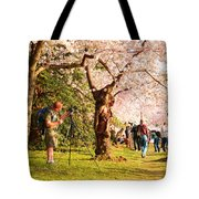 Cherry Blossoms 2013 - 009 Tote Bag