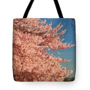 Cherry Blossoms 2013 - 013 Tote Bag