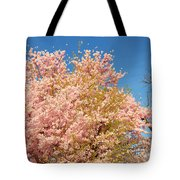 Cherry Blossoms 2013 - 016 Tote Bag