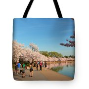 Cherry Blossoms 2013 - 020 Tote Bag