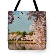 Cherry Blossoms 2013 - 023 Tote Bag