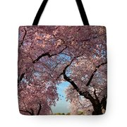 Cherry Blossoms 2013 - 024 Tote Bag
