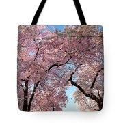 Cherry Blossoms 2013 - 025 Tote Bag