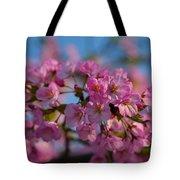 Cherry Blossoms 2013 - 031 Tote Bag