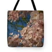 Cherry Blossoms 2013 - 035 Tote Bag