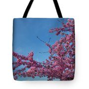 Cherry Blossoms 2013 - 037 Tote Bag
