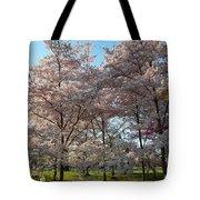 Cherry Blossoms 2013 - 049 Tote Bag