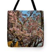 Cherry Blossoms 2013 - 051 Tote Bag