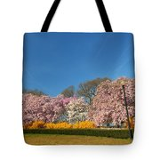 Cherry Blossoms 2013 - 052 Tote Bag