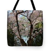 Cherry Blossoms 2013 - 056 Tote Bag
