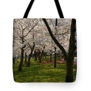 Cherry Blossoms 2013 - 057 Tote Bag