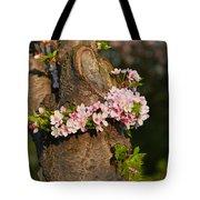 Cherry Blossoms 2013 - 064 Tote Bag
