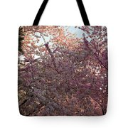 Cherry Blossoms 2013 - 065 Tote Bag