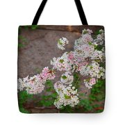 Cherry Blossoms 2013 - 067 Tote Bag