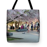 Cherry Blossoms 2013 - 069 Tote Bag