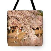 Cherry Blossoms 2013 - 076 Tote Bag