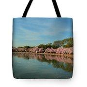 Cherry Blossoms 2013 - 087 Tote Bag