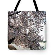 Cherry Blossoms 2013 - 092 Tote Bag