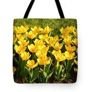 Cherry Blossoms 2013 - 094 Tote Bag