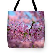 Cherry Blossoms 2013 - 095 Tote Bag