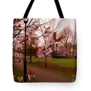 Cherry Blossoms At Kirkland In Kendal Tote Bag