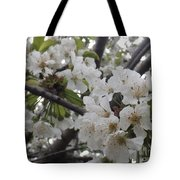 Cherry Blossoms Branching Out Tote Bag