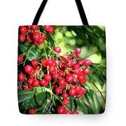Cherry Laurel  Tote Bag
