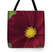 Cherry Petals Tote Bag