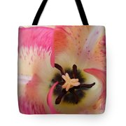 Cherry Pink Swirl Tote Bag