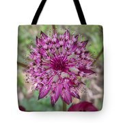 Cherry-queen Of The Prairie Flower Tote Bag