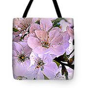 Cherry Tree Blossoms Tote Bag