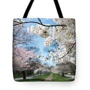 Cherry Trees Tote Bag